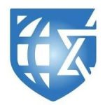 Online Antisemitism Task Force